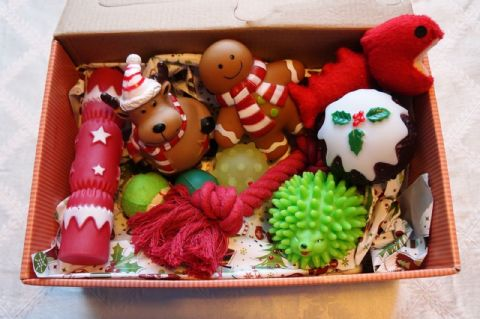 BULK CHRISTMAS DOG TOY SET OF 10 FESTIVE TOYS SUITABLE FOR SMALL TOY DOGS & PUPS